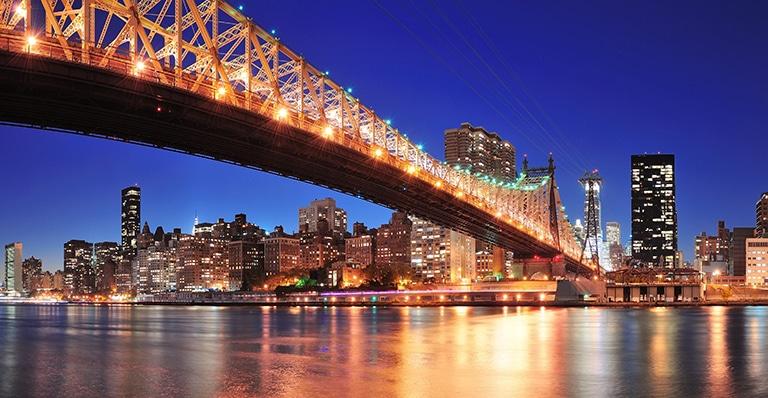 endometriosis y dolor pélvico 2020 nueva york